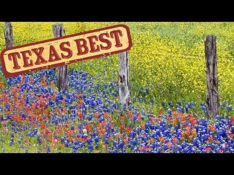 Texas Best - Wildflowers (Texas Country Reporter)