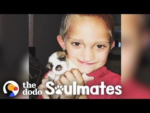 Boy And His Puppy Both Have The Same Cleft Palates
