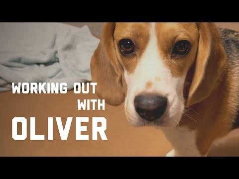 Working out with Oliver Video