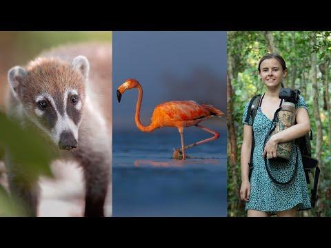 MY BIGGEST ADVENTURE: Flamingos, Monkeys, Turtles & Coatis #Video