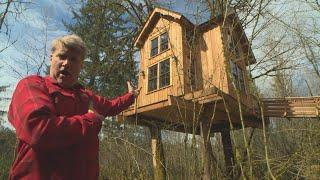 Check Out The Soaring Ceilings In This Treehouse Escape, 20 Feet Off The Ground