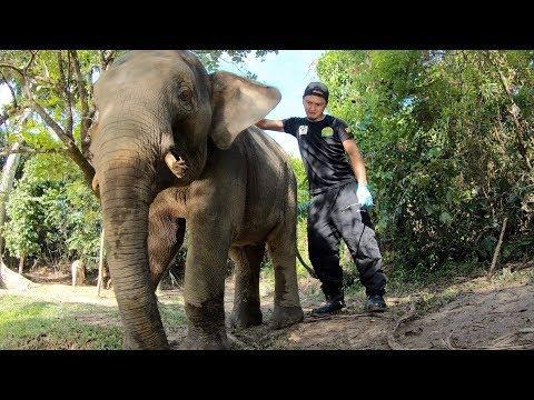 Wildlife Rescue Unit Rangers