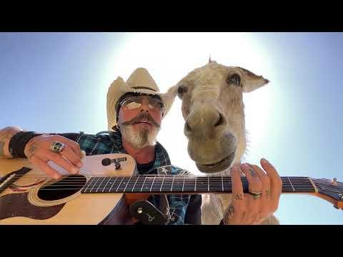 Lilly the Donkey Loves Pancakes #Video