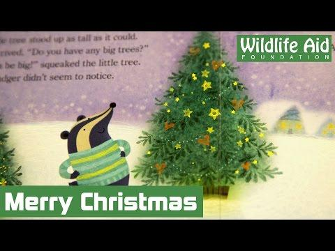 The Little Christmas Tree Read By Simon Cowell