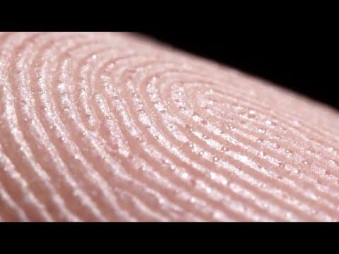 What Your Sweat Looks Like Up Close Video. Your Daily Dose Of Internet