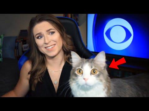 Cute Animals and Work From Home News Video Bloopers
