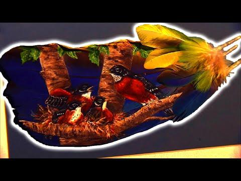 Feather Painter Video (Texas Country Reporter)