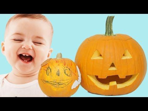 Life Through Pumpkins