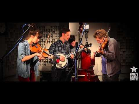 Jayme Stone's Lomax Project - Foreign Lander [Live At WAMU's Bluegrass Country]
