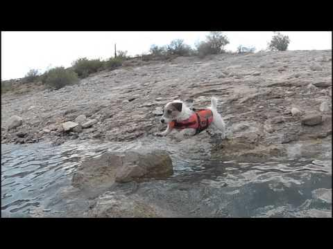 Jesse's Epic Lake Jumps (Slow Motion)