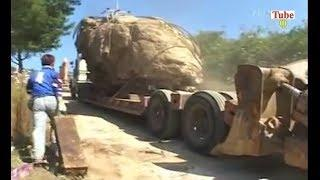 Awesome Heavy Equipment Gone Wrong [ FAIL / WIN ]