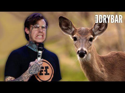 Hitting A Deer Doesn't Make You A hero. Comedian Shayne Smith #Video