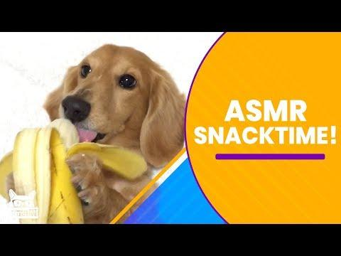 ASMR Snack Time