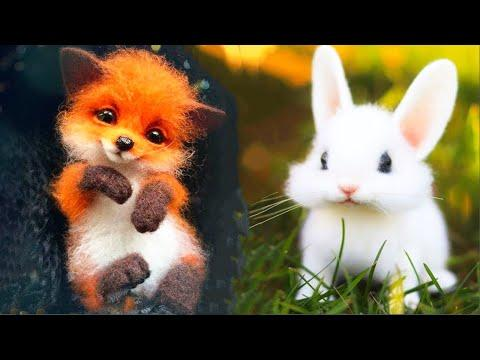 Cutest baby animals Videos Compilation Cute moment of the Animals - Cutest Animals #17