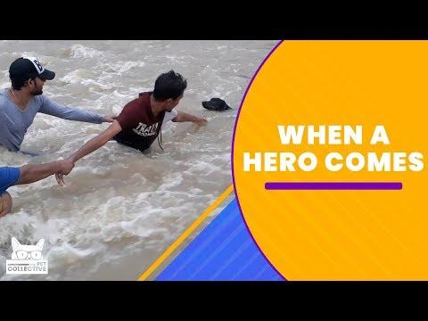 When A Hero Comes Along Compilation