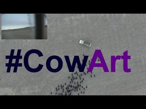 How To Make CowArt With A Drone And Feed Truck