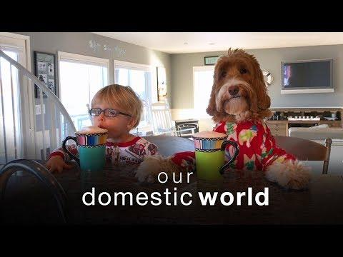 Our Domestic World: The Stairs & The Porch