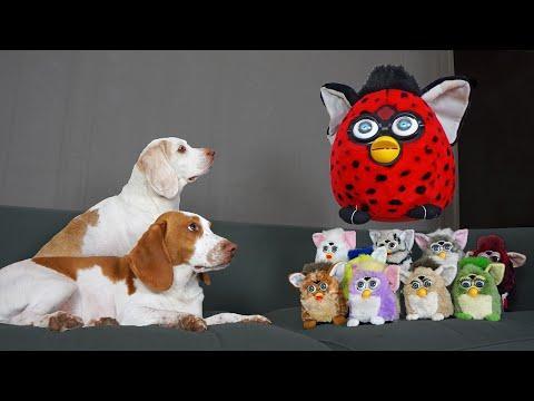 Dogs vs Giant Furby Prank Video! Funny Dogs vs Furbies Invasion Pranks