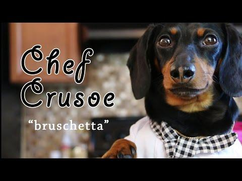 Chef Crusoe The Dachshund, Meets Gino D Acampo