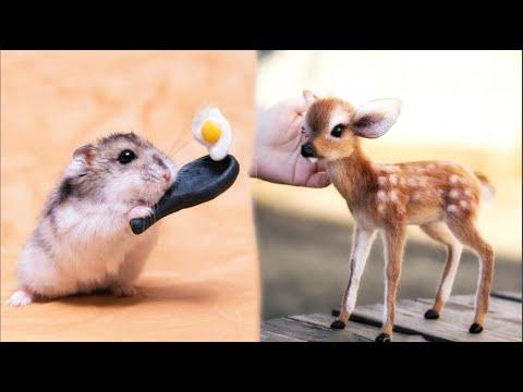 AWW Animals SOO Cute! Cute baby animals Videos Compilation cute moment of the animals #1