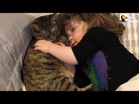 Cat and Little Girl Best Friends Have The Most Special Relationships