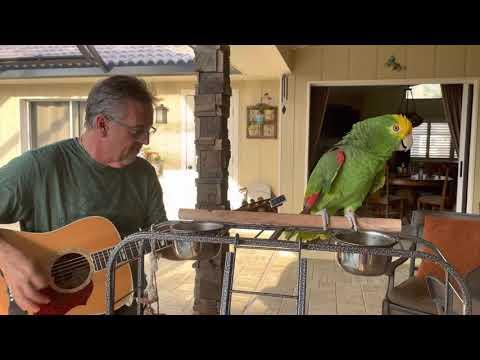 World I Know. Frank Maglio Tico & the Man Video