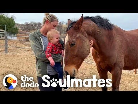 A Horse named Magic Inspires At-Risk Girls