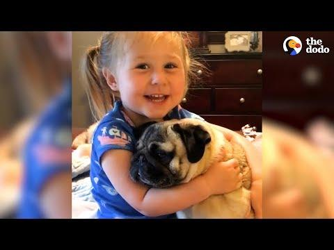 Little Girl Says The Funniest Things To Her Pugs