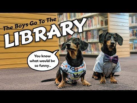 Ep #5: The Dogs Go to The Library! - Cute & Funny Dachshund Video!