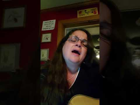 Tin Man - Diana Wilcox Cover Video