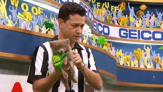 Puppy Profile: Morris the Pomeranian   Puppy Bowl XIV
