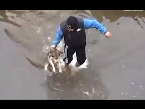 Drowning puppy shows pure joy after rescue video
