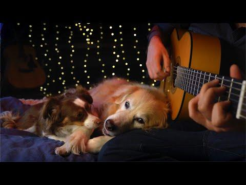 Lean On Me - Bill Withers (Fingerstyle Guitar)