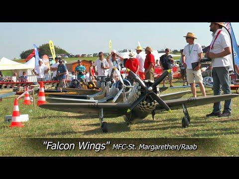 RC Scale Airplanes - Falcon Wings - 6 Warbirds In Action