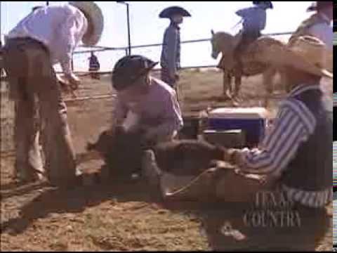 Cowboy Artist (Texas Country Reporter)