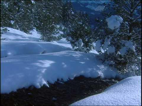 André Rieu - I'm dreaming of a White Christmas
