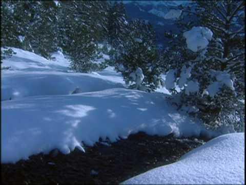 André Rieu - I'm dreaming of a White Christmas