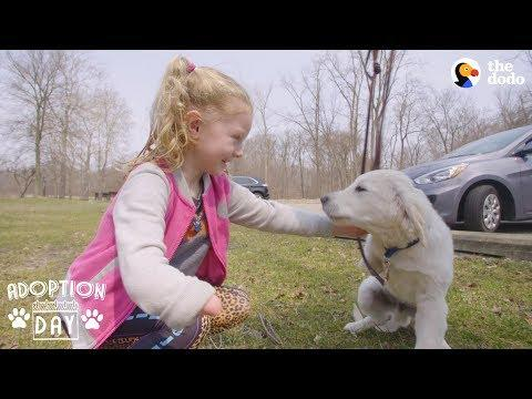 Very Special Puppy Gets A Sister Who's Just Like Him - POPCORN | The Dodo Adoption Day