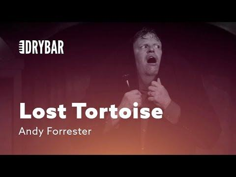 Lost Tortoise. Comedian Andy Forrester