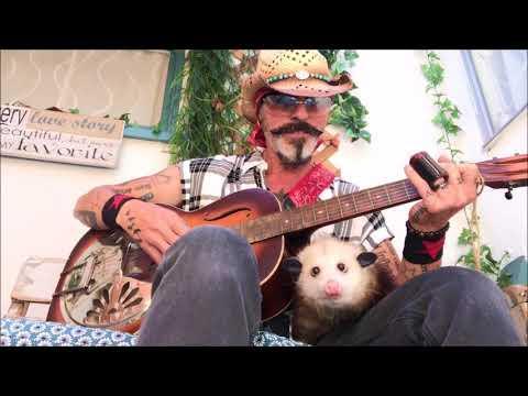 Hazel the Donkey's Friend Jackie the Opossum Loves Slide Guitar Video