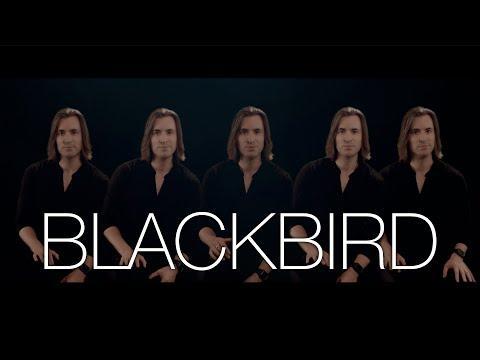 Blackbird Video | The Beatles | Bass Singer Cover