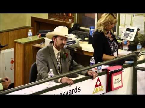 The Best Auctioneer EVER! - Rhett Parks