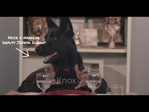 Police Dogs Star In Hilarious Thanksgiving Sketch