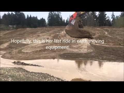 Young Deer Rescued From Mud By Excavator Operator