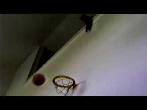 Ceiling Cat Plays Basketball