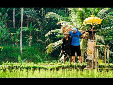 Bali Road Trip In 4K! - #onedayoffline