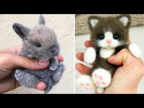 Cute baby animals Videos Compilation cute moment of the animals - Cutest Animals #31  #Video