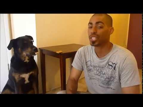 Dog Pulls A Fast One On His Human