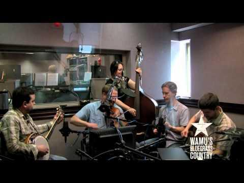 Foghorn Stringband - Gentleman From Virginia [Live At WAMU's Bluegrass Country]