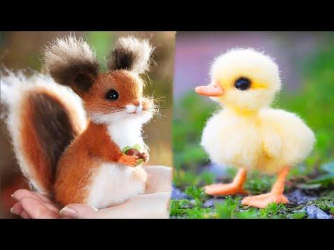 Cute baby animals Videos Compilation. Best Of The Best  - September 2020